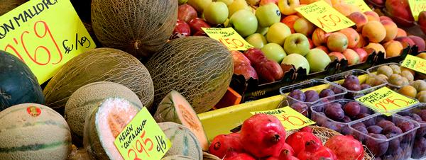 Camaras frigoríficas para frutas y verduras