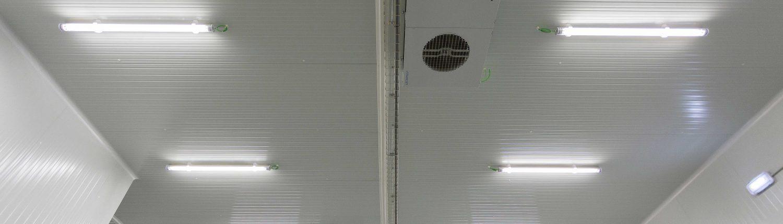 Iluminaci n para c maras frigor ficas eficiencia y bajo - Iluminacion para techos bajos ...