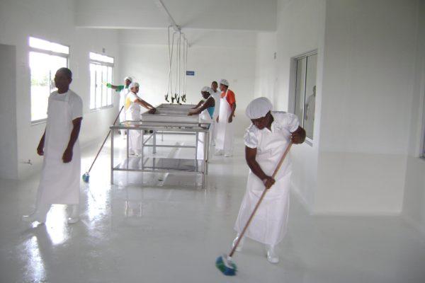 guía de limpieza de instalaciones de frío