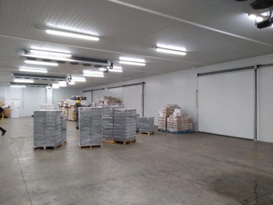 Instalación Cámara con Evaporadores de plafón